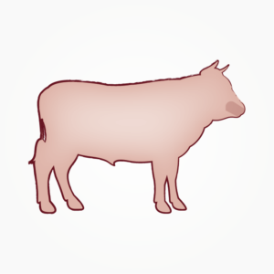 seitz-barf-symbole-17