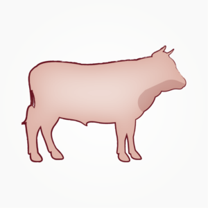 seitz-barf-symbole-18
