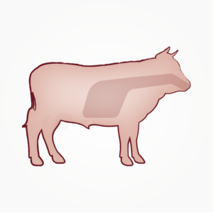 seitz-barf-symbole-21